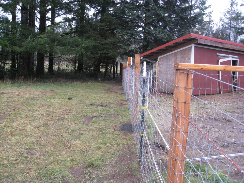 Llamas   Alpacas   Goats   Sheep Fencing – Farm & Ranch   Field Fencing