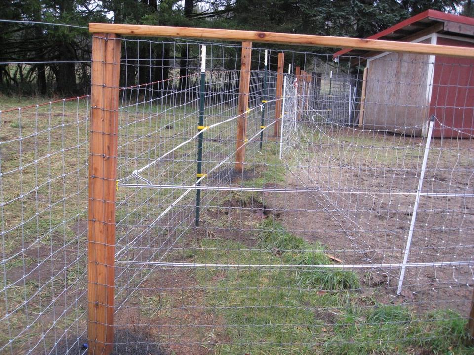 Llamas | Alpacas | Goats | Sheep Fencing – Farm & Ranch | Field Fencing